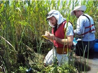 CNPS's Danny Slakey on a Rare Plant Treasure Hunt with Rivers for Change