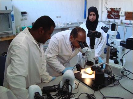 Students working the the ARCE-built conservation lab at Karnak Temple