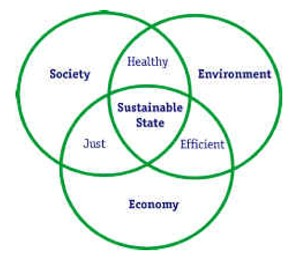 Links among economic, social, and environmental parts