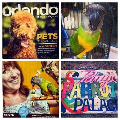 See us in Sept issue Orlando