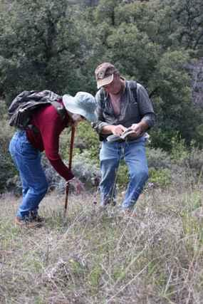 Mount Lassen chapter members key out a plant during a chapter field trip.