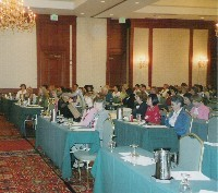Conference Presentation to Social Workers