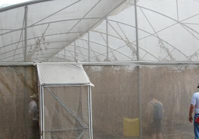In late 2007 USA New Horizons helped to coordinate the installation of a greenhouse in Buenos Aires.