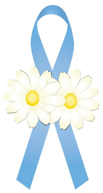 The Official TTTS Awareness Ribbon is baby blue because after the storm, we hope and pray for the sky to turn blue again and that the babies will live and be healthy like daisies growing and flourishing in fields.