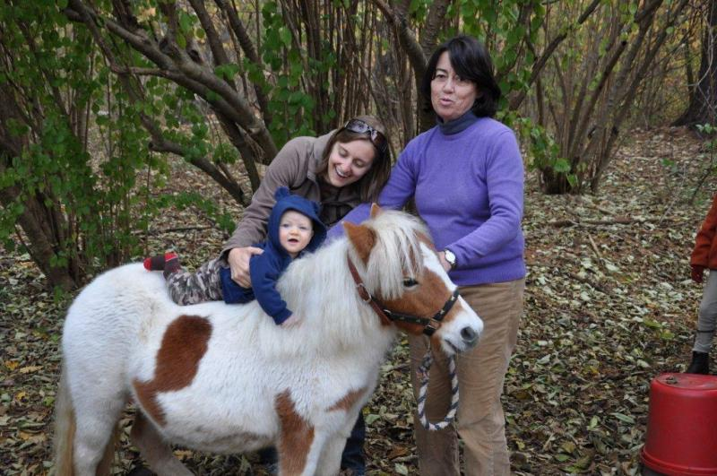 Even babies love Rattlebox.Pocket the pony was saved from the