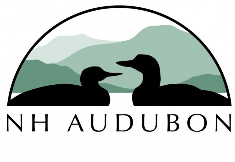 New Hampshire Audubon Logo