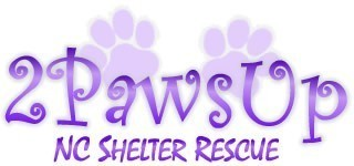 Two Paws Up NC Shelter Rescue Inc Logo