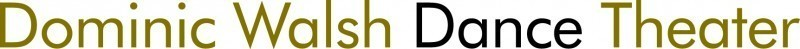 Dominic Walsh Dance Theater Logo
