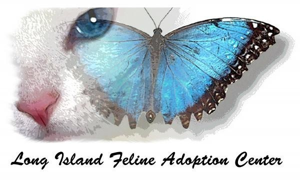 LONG ISLAND FELINE ADOPTION CENTER INC Logo