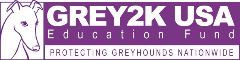 GREY2K USA Education Fund Logo