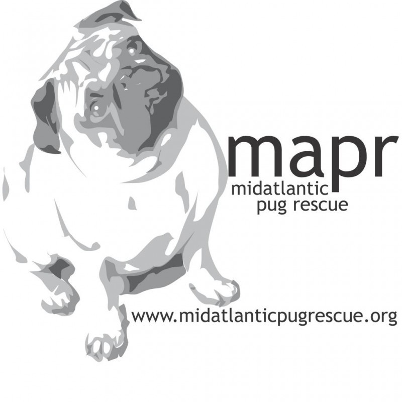 MID-ATLANTIC PUG RESCUE Logo