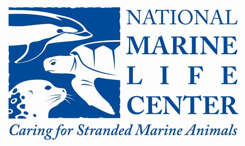 National Marine Life Center, Inc. Logo