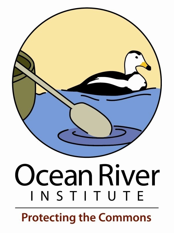 Ocean River Institute Inc Logo
