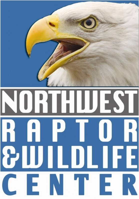 NORTHWEST RAPTOR & WILDLIFE CENTER Logo