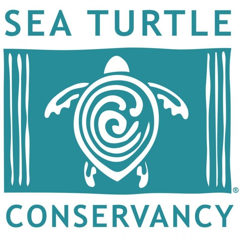 Sea Turtle Conservancy