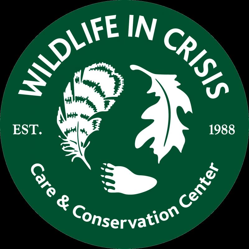 Wildlife in Crisis, Inc. Logo