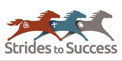Strides to Success Inc Logo