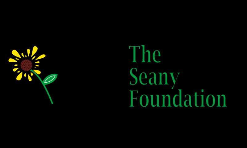 The Seany Foundation Logo