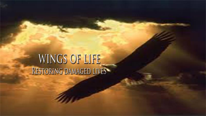 Wings of Life Inc Logo