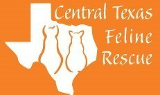 Central Texas Feline Rescue Inc Logo