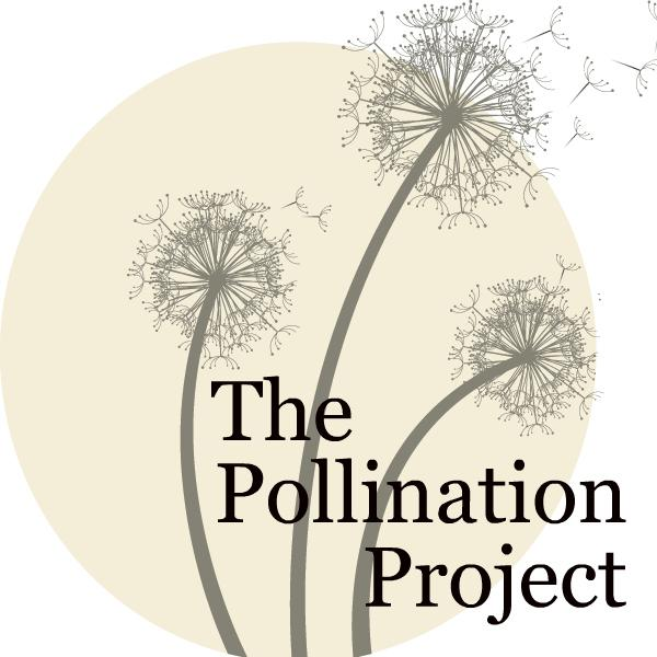The Pollination Project Foundation