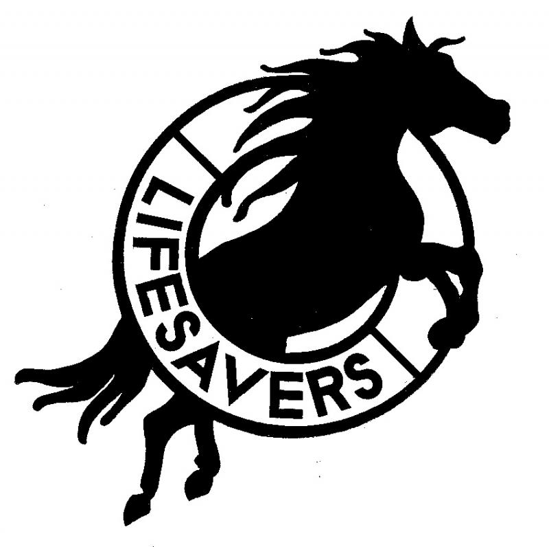 Lifesavers Inc Logo
