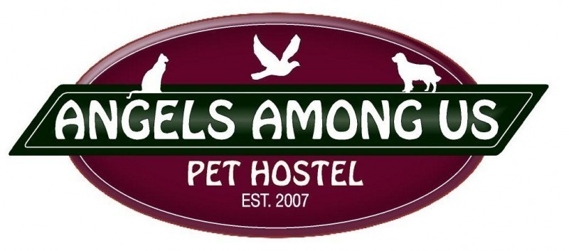 Angels Among Us Pet Hostel, Inc. Logo