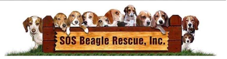 SOS Beagle Rescue Inc Logo