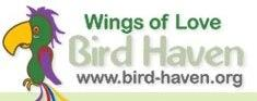 Wings of Love Bird Haven Inc Logo