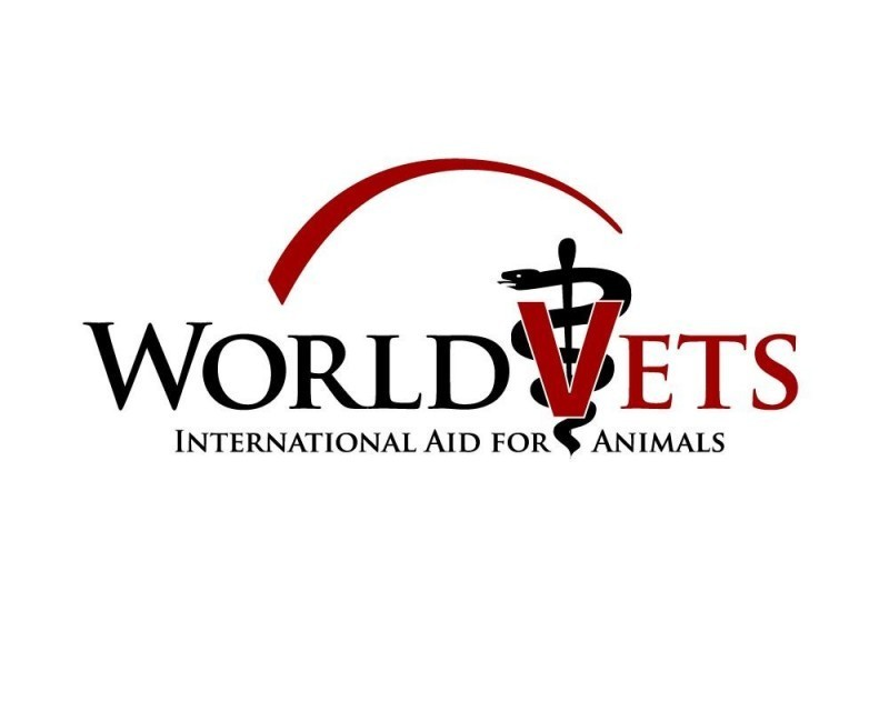 World Vets Logo