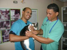 Humane Society Of Puerto Rico Inc