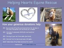 Helping Hearts Equine Rescue