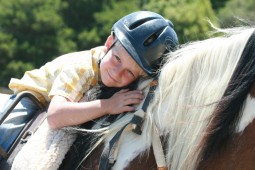 Giant Steps Therapeutic Equestrian Center, Inc.