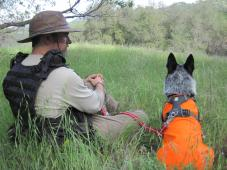 CONSERVATION CANINES - University of Washington Foundation
