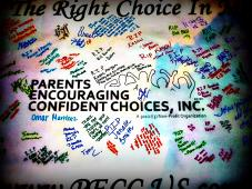 PARENTS ENCOURAGING CONFIDENT CHOICES INC