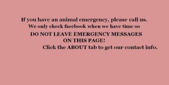 Paws Animal Wildlife Sanctuary Inc