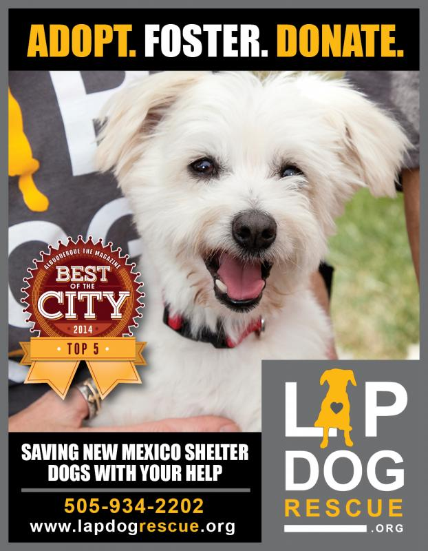 Lap Dog Rescue Nm