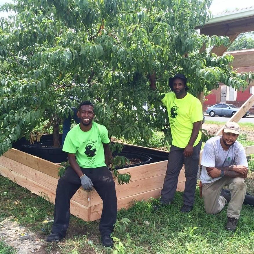 New Jersey Tree Foundation Inc - GreatNonprofits