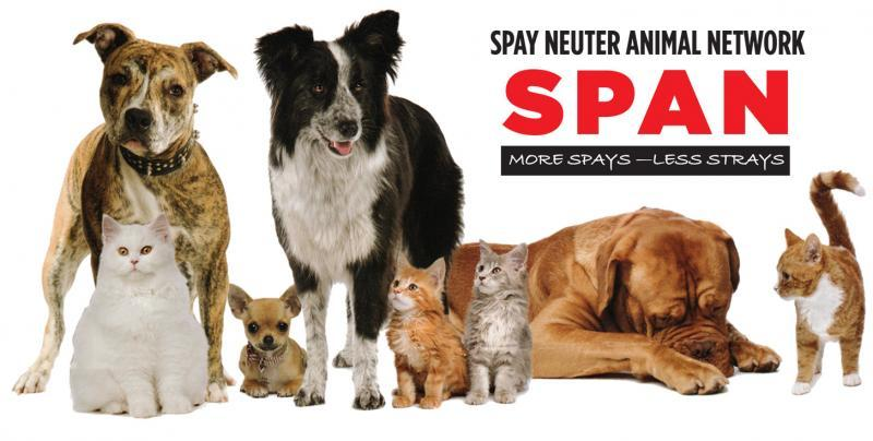 Spay-Neuter Animal Network Logo