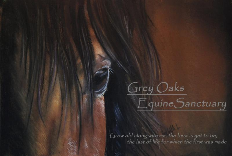 Grey Oaks Equine Sanctuary Logo