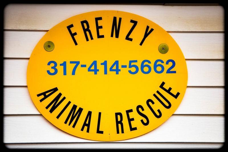 Frenzy Animal Rescue Inc Logo