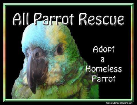 APR All Parrot Rescue Logo