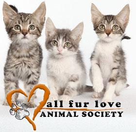 All Fur Love Animal Society Logo