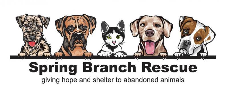 Spring Branch Rescue Logo