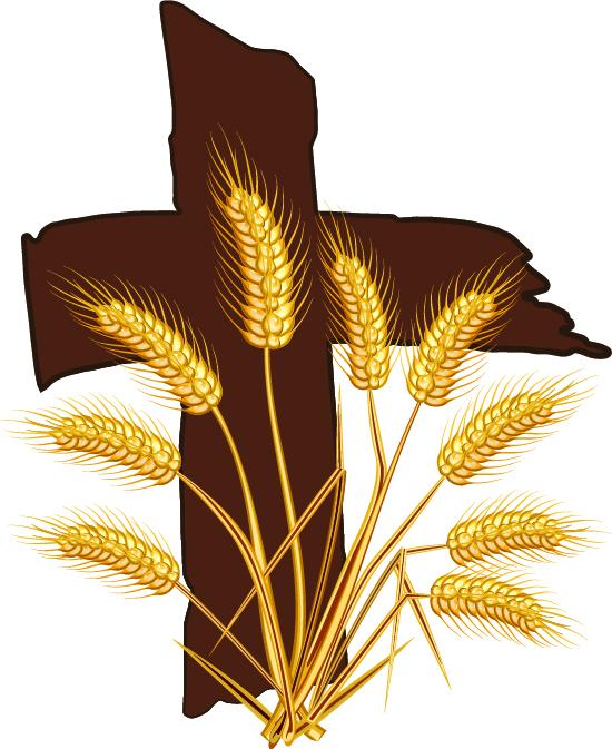 Bountiful Harvest Ministries Inc Logo