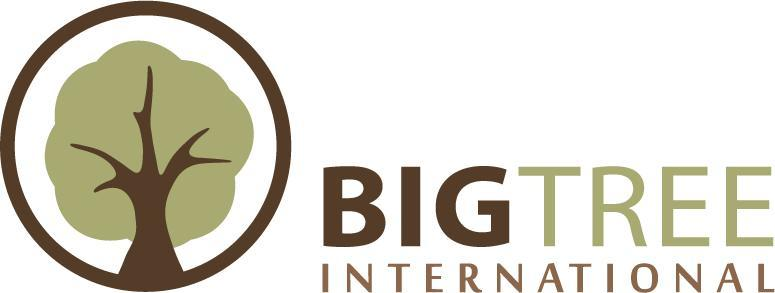 Big Tree International Logo