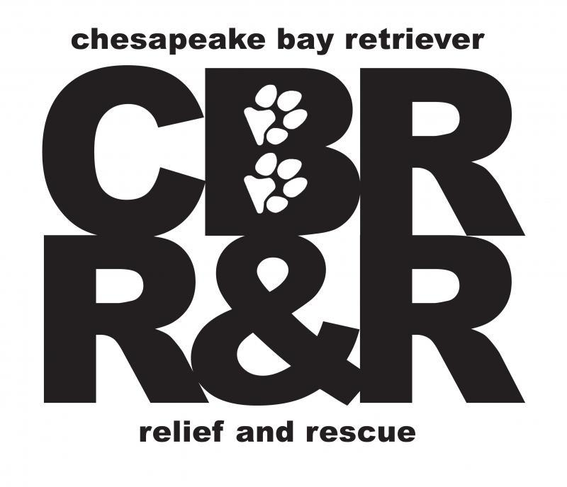 Chesapeake Bay Retriever Relief And Rescue Inc Logo