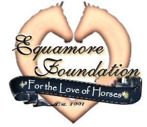 Equamore Foundation Logo