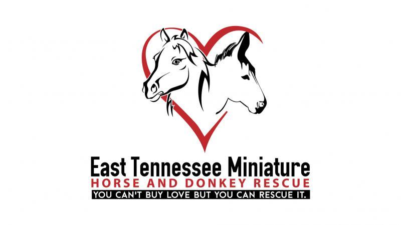 East Tennessee Miniature Horse And Donkey Rescue Reviews and