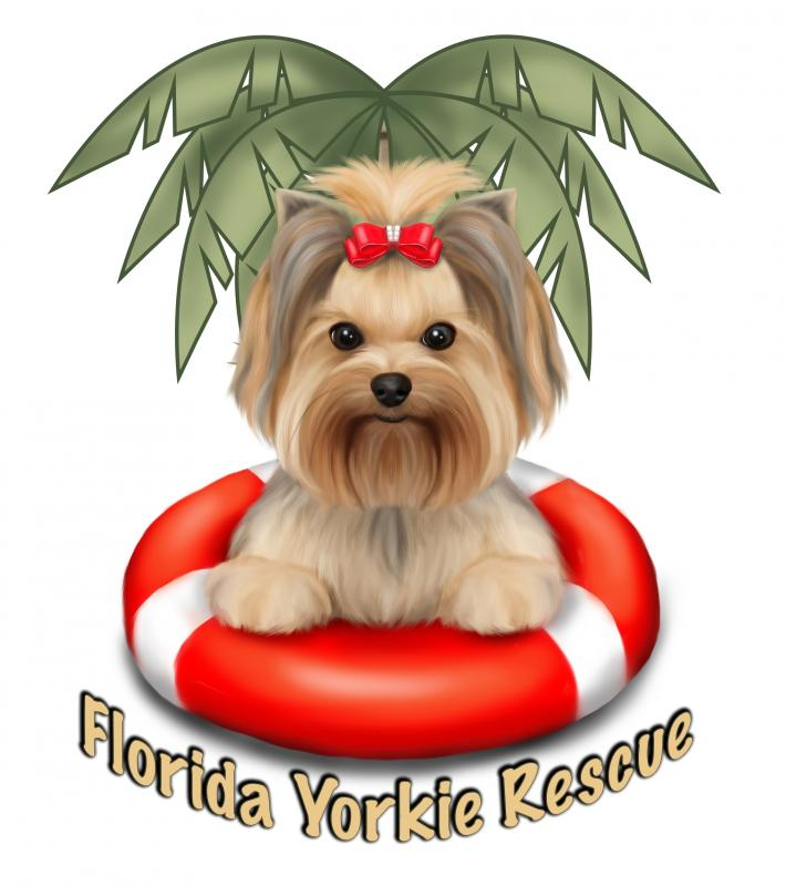 Florida Yorkie Rescue, Inc. Logo